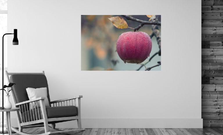 Jabłko fotoobraz