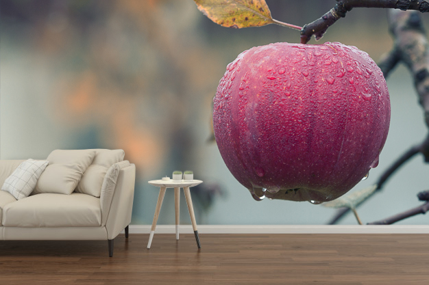fototapeta jabłko