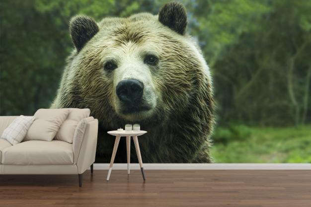 fototapeta z niedźwiedziem