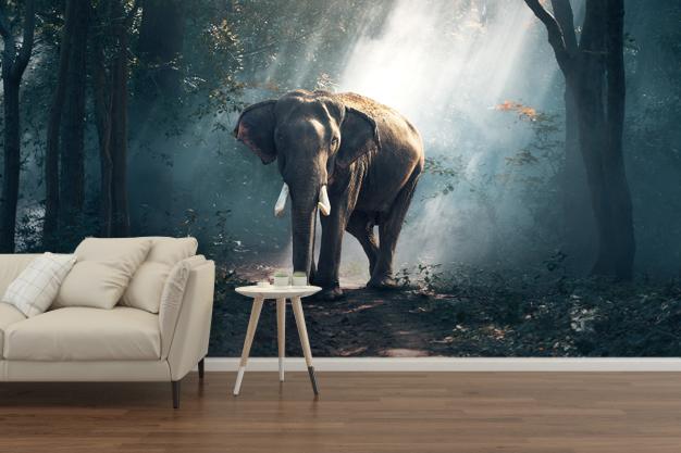 fototapeta ze słoniem